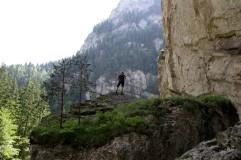 Karpatų kalnai