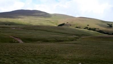 Bucedžio kalnai