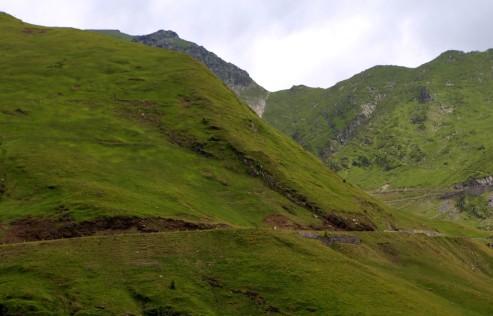 Fagarašo kalnai