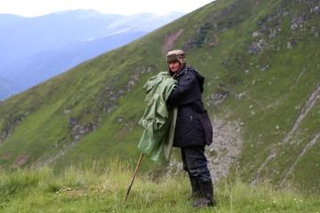 Fagarašo kalnų piemuo
