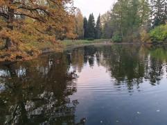 Likėnų parkas ir tvenkinys