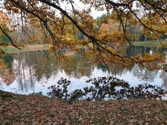 Likėnų parkas ir tvenknys