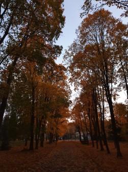Likėnų parkas