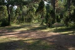 Tehumardi kempingas Saremoje