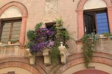 Gėlės balkonėliuose