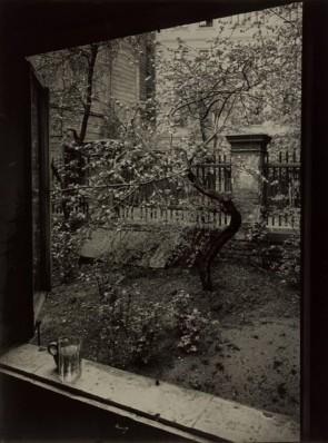 Josef Sudek, The Window of my Studio Spring in my Garden, Prague, 1954.