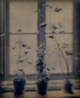 Karl Struss, The Attic Window, Dresden, 1909.