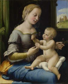 Full title: The Madonna of the Pinks ('La Madonna dei Garofani') Artist: Raphael Date made: about 1506-7 Source: http://www.nationalgalleryimages.co.uk/ Contact: picture.library@nationalgallery.co.uk Copyright © The National Gallery, London