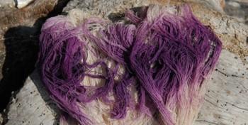 Violetinė iš jūrinių moliuskų mureksų sekreto